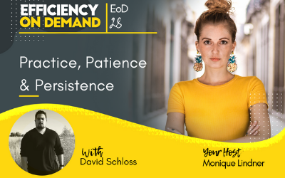 Practice, Patience & Persistence with David Schloss
